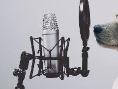 2018年优秀音乐艺考培训机构必备的特质
