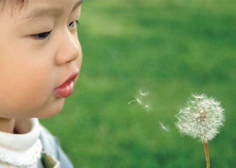 在大自然中培养孩子的美育