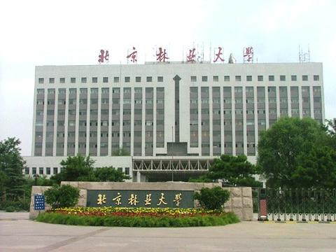北京林業大學2011年藝術特長生招生簡章
