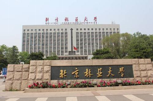 2014年北京林业大学艺术特长生招生简章