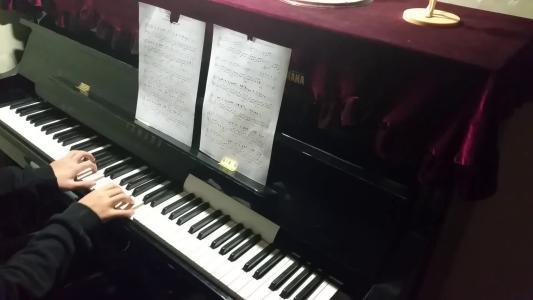 报一个钢琴班多少钱?