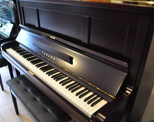 蘇州鋼琴培訓價格是多少?收費標準