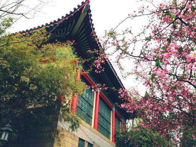 南京艺术学院2016年本科招生简章
