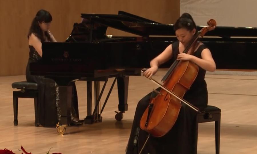 乐器 《波兰舞曲》大提琴独奏