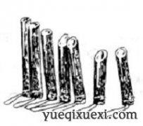 中国民族乐器——基诺竹筒