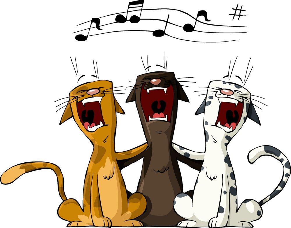 声乐知识之唱歌发声练习步骤